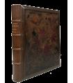 THEURIET (André). Nos oiseaux. Edition originale illustrée par Giacomelli. Reliure de Marius Michel. Exemplaire sur Japon.