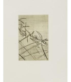 BELLO (Danielle). Le Signe et la forêt. Edition originale. Eaux-fortes originales d'Alain Bar. Un des 5 premiers exemplaires.