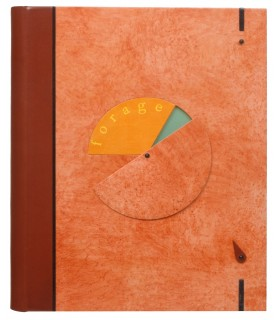 BUTOR (Michel). Forage. Edition originale ornée de bois gravés de Délias, et de photographies. Reliure de Brigitte Benoist.