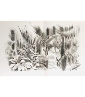 CUREL (François de). La Chasse, ma grande passion. Illustrations de Ivan Levesque.